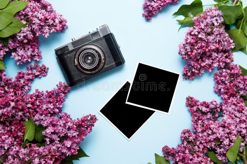 Lily bukiet z retro ekranową kamerą i photocards na błękitnym tle Odg?rny widok, mieszkanie nieatutowy obraz stock