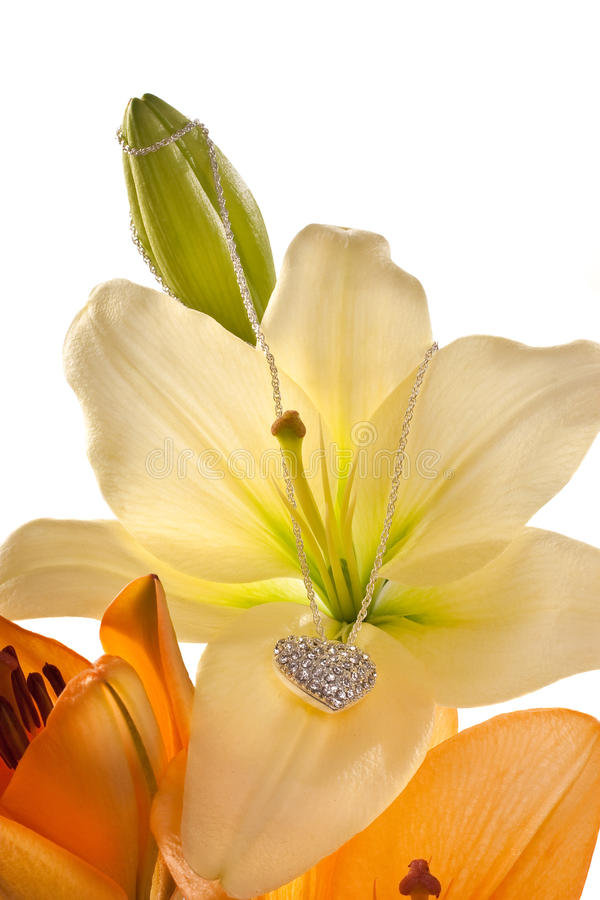 Download Lily With Chain And Diamond Heart Stock Image - Image of composition, flora: 10018811
