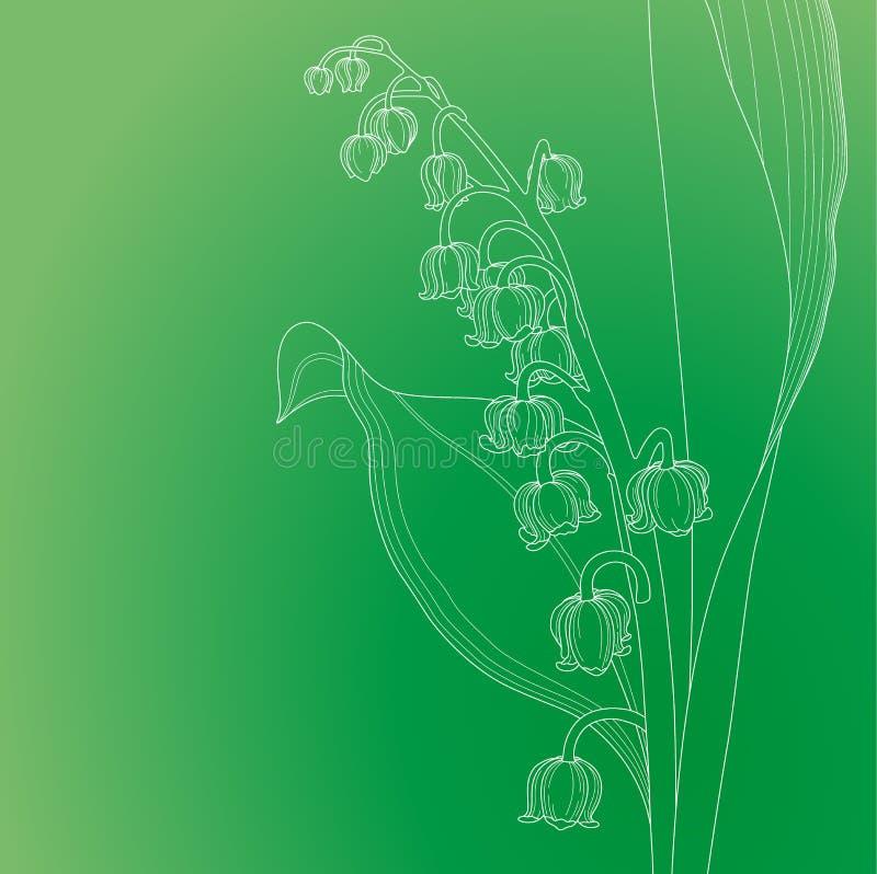 lily charakteru rosyjski nieznane doliny świat obrazy royalty free