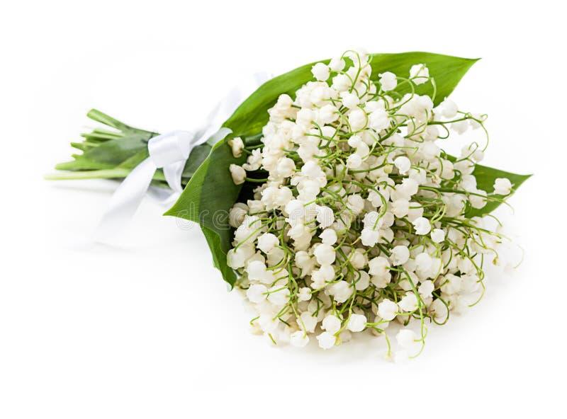lily charakteru rosyjski nieznane doliny świat zdjęcie royalty free
