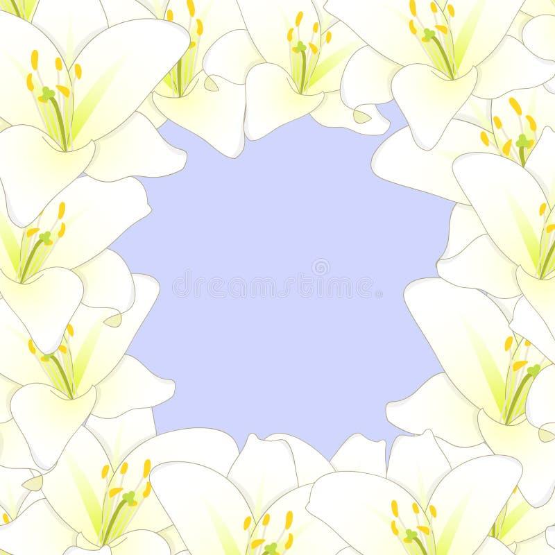 Lily Flower Border blanca aislada en fondo púrpura Ilustración del vector libre illustration