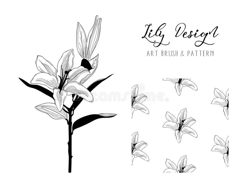 Lily Flower Design Art Brush en Patroon Vector vector illustratie