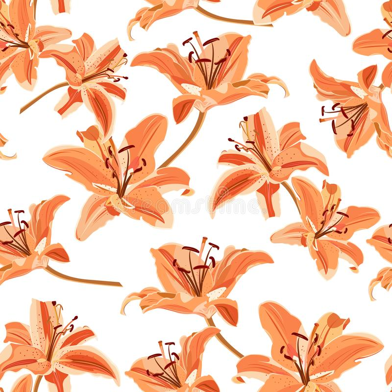 Lily flower seamless pattern on white background, Orange lily floral royalty free illustration
