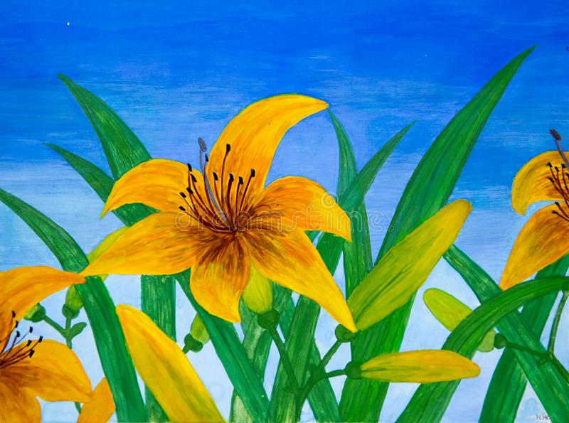 Lily flowers yellow against the green of the blue sky. royalty free stock image