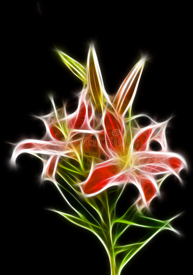 Free Lily Illustration Stock Images - 6217044