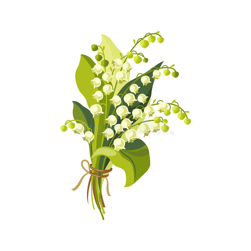 Free Lily Of The Valley Hand Drawn Realistic Illustration Royalty Free Stock Images - 71575819