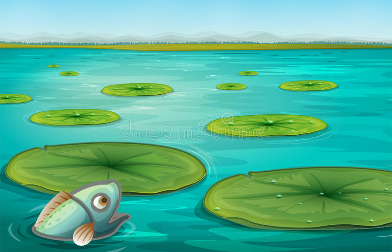 Lily pads. Illustration of lily pads on water stock illustration