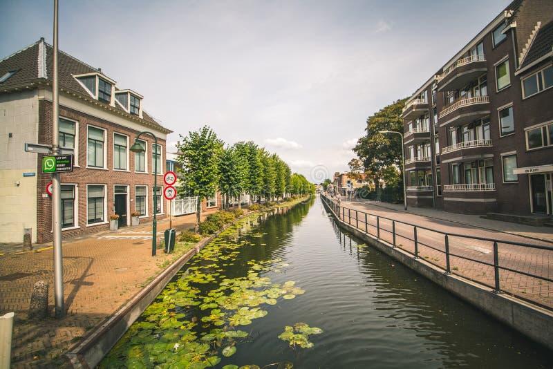 Lily Pads em um canal em Rotterdam, Países Baixos imagens de stock royalty free