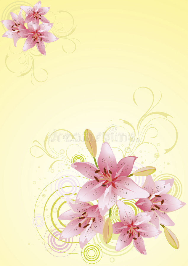 Lily pink, vector floral background royalty free illustration