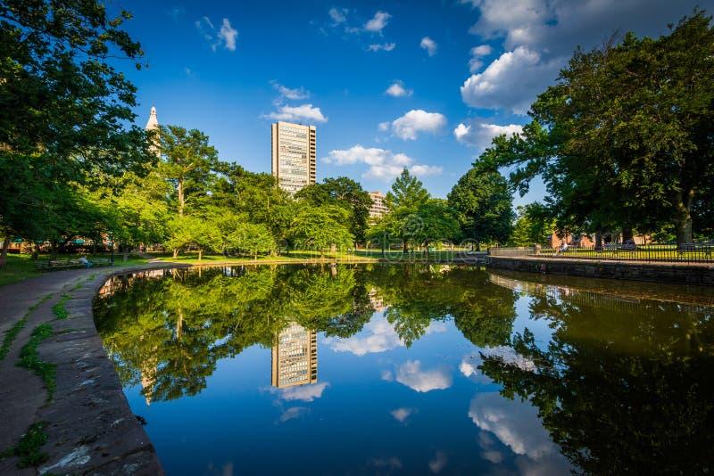 Lily Pond an Bushnell-Park, in Hartford, Connecticut lizenzfreies stockbild