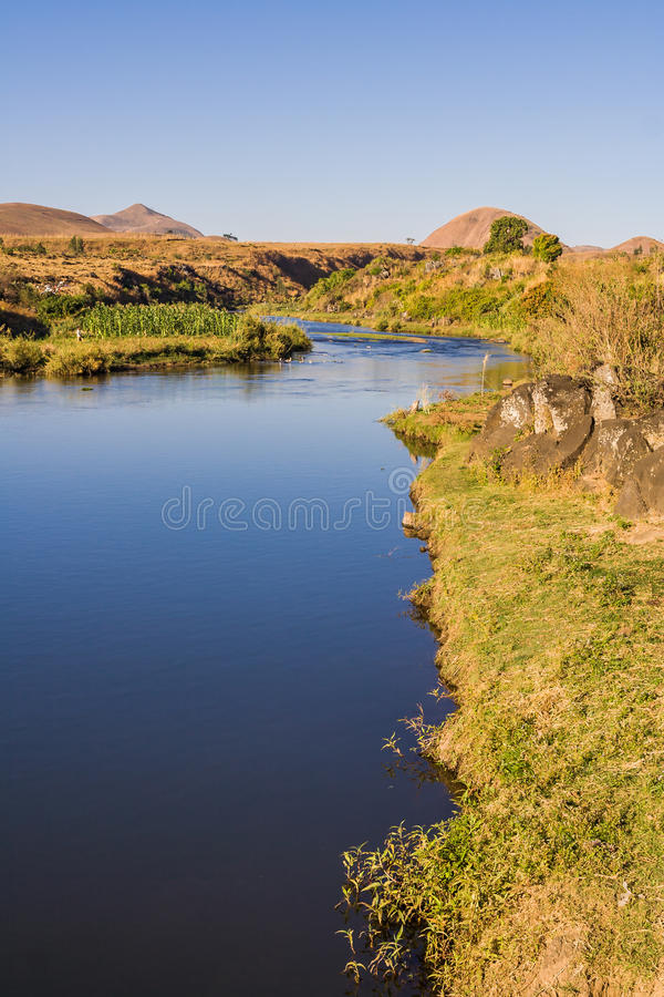 Lily river. Near Ampefy, Madagascar royalty free stock images