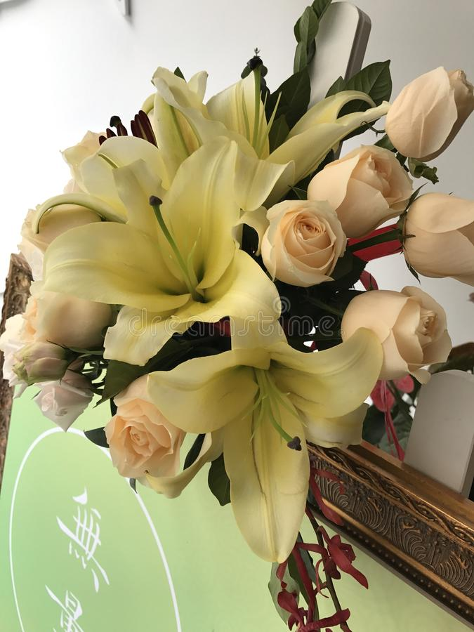 Lily&Rose стоковое изображение