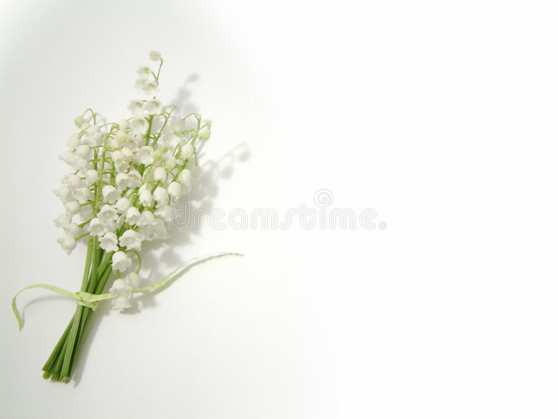 Lily of the valley. Bunch of flowers tied with a green crinkled paper tie