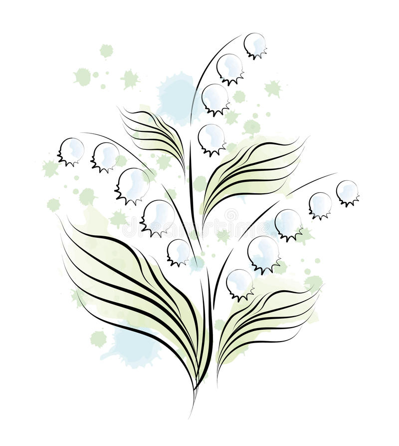 Lily of the valley. Sketch royalty free illustration