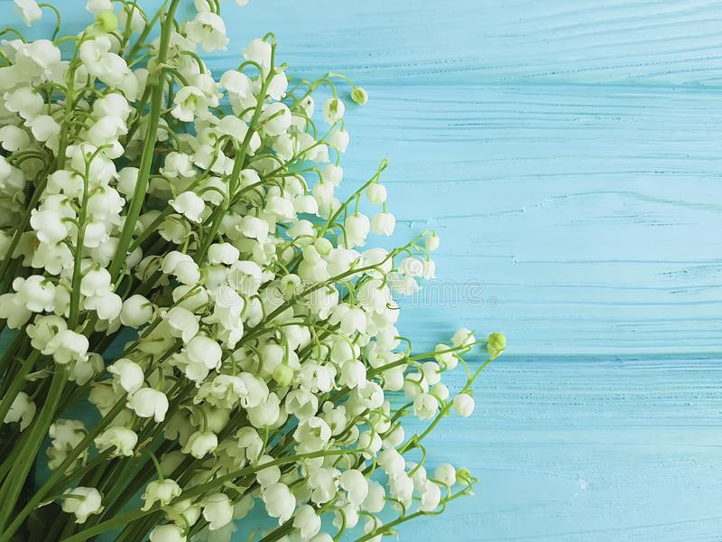 Lily of the valley on blue wooden celebration floral spring flowers greetings stock images