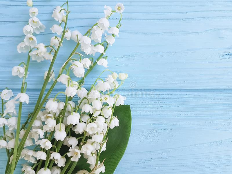 Lily of the valley on blue wooden spring flowers greetings stock photography