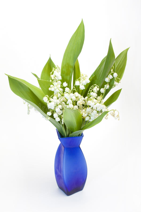 Download Lily-of-the-valley bouquet stock photo. Image of white - 14398456