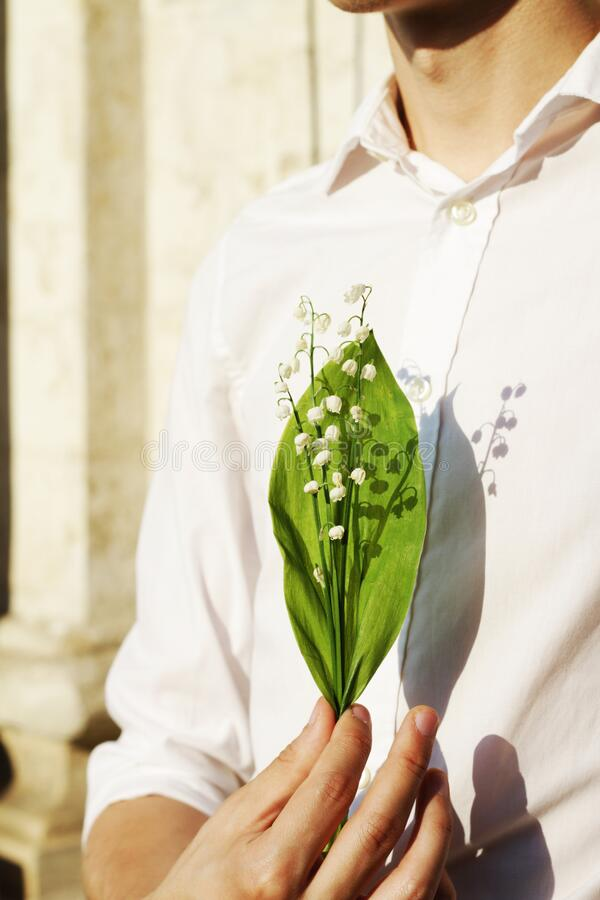Lily of the valley in a man`s hand stock photography