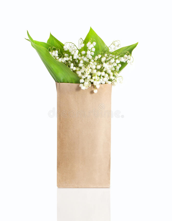 Lily of the valley in a paper bag on white background. Lily of the valley in a paper bag on white royalty free stock image