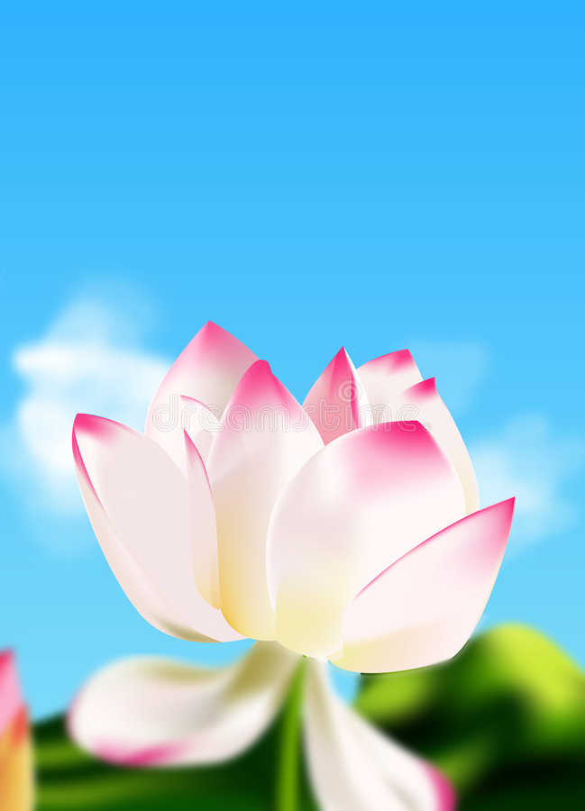 lily wody royalty ilustracja