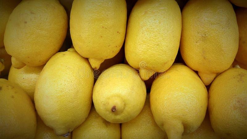 Limão amarelo fresco do jeruk fotos de stock