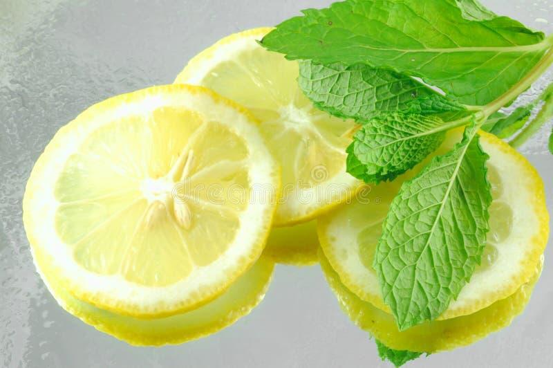Limão & hortelã foto de stock