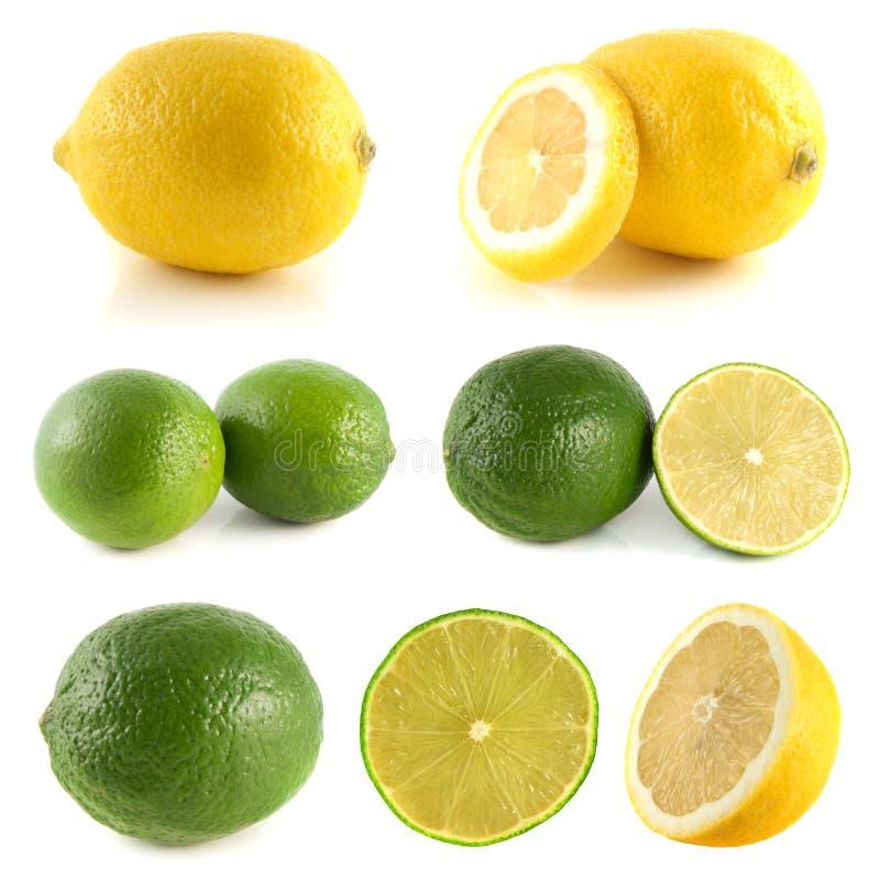 Limão, coleção do cal no branco imagem de stock royalty free