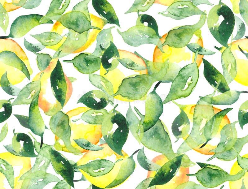 Limão do fruto da aquarela e fundo sem emenda do teste padrão das folhas verdes ilustração do vetor
