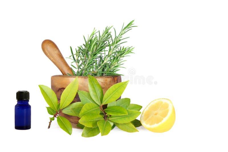 Limão e ervas imagens de stock
