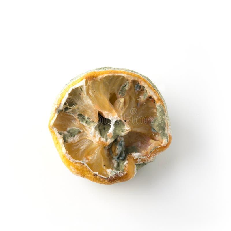 Limão feio com o molde no fundo branco Imagem quadrada Feche acima, isolado fotos de stock