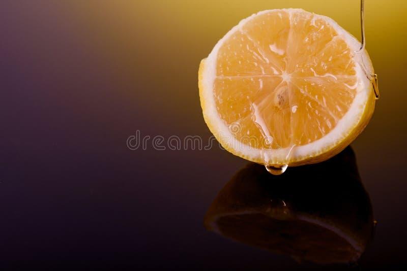 Limão maduro derramado com mel delicioso Gotas do mel no limão fotografia de stock royalty free