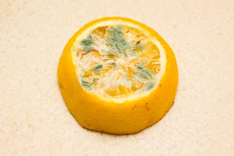 Limão mofado em um fundo claro Alimentos estragados que são perigosos para o consumption_ fotografia de stock