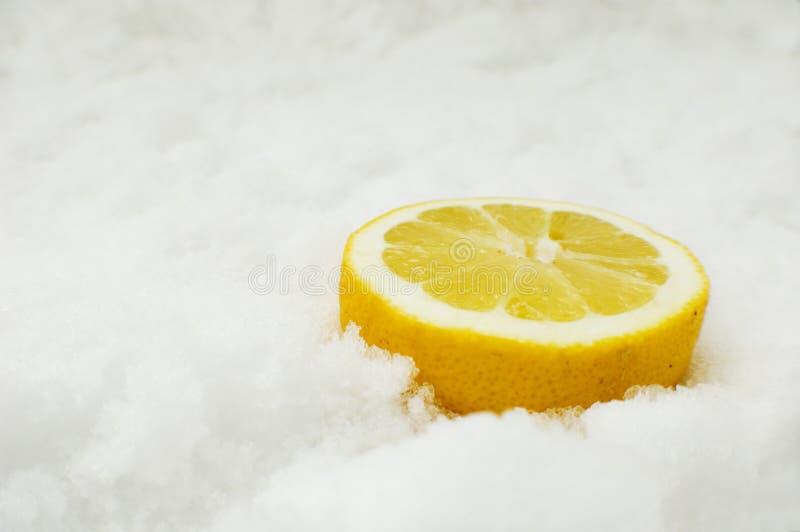 Limão na neve foto de stock