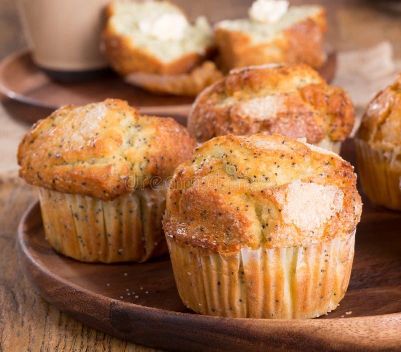 Limão Poppy Seed Muffin Closeup fotografia de stock royalty free
