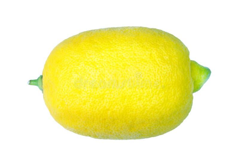 Limón amarillo maduro aislado en blanco fotografía de archivo libre de regalías