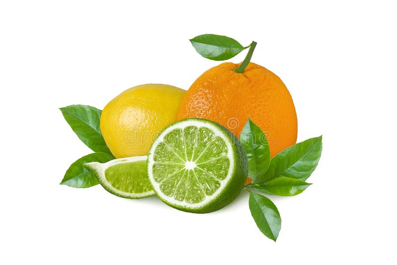 Limón, cal verde y naranja aislados en el fondo blanco Rebanadas y hojas de la fruta cítrica imagen de archivo
