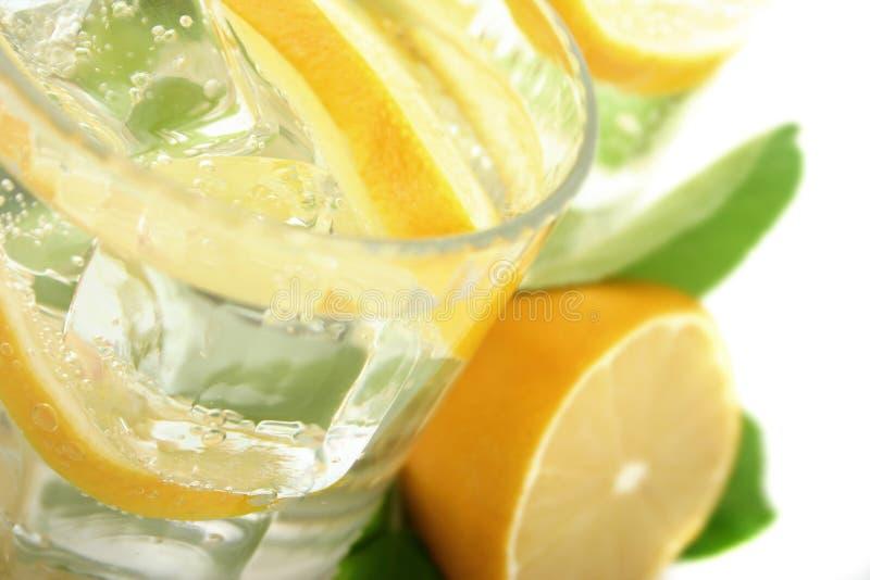 Limón en soda foto de archivo