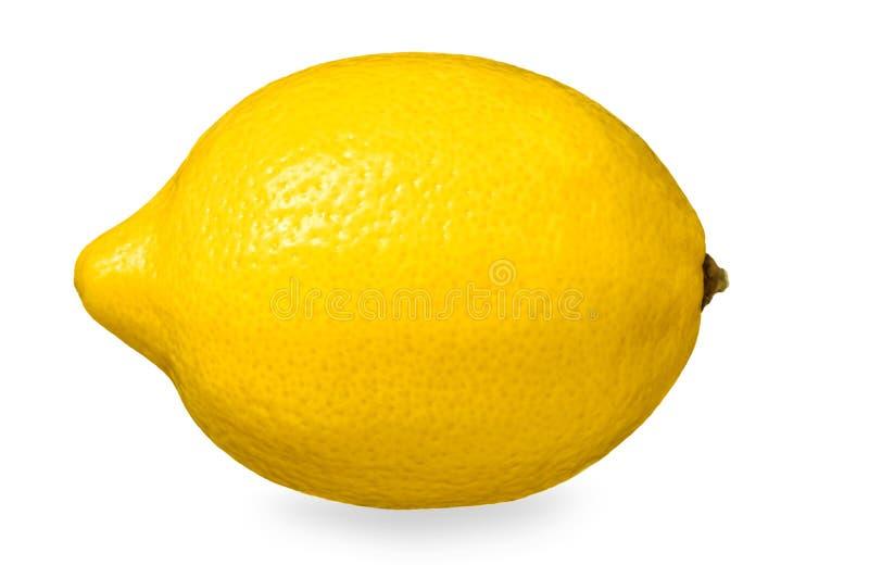 Limón maduro amarillo aislado foto de archivo