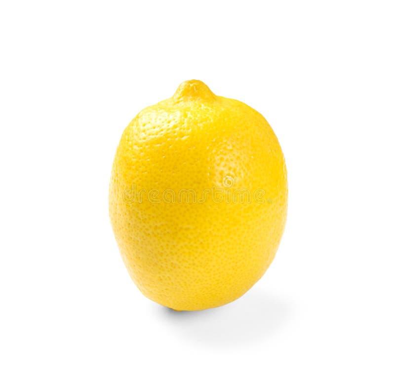 Limón maduro entero fotografía de archivo
