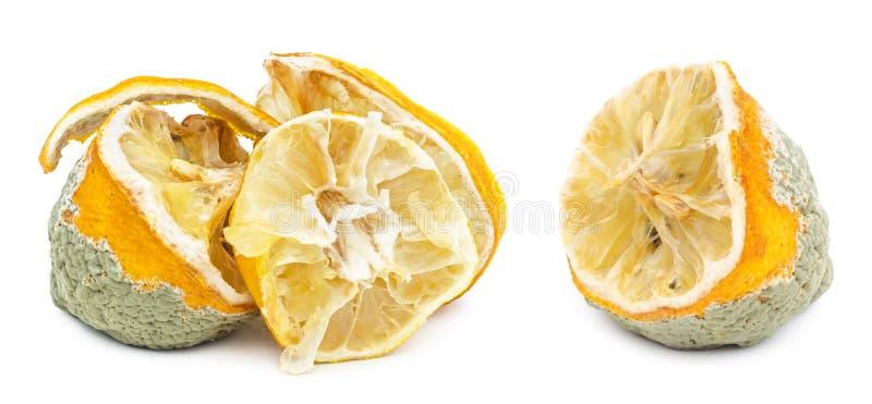 Limón mohoso putrefacto aislado en blanco foto de archivo libre de regalías