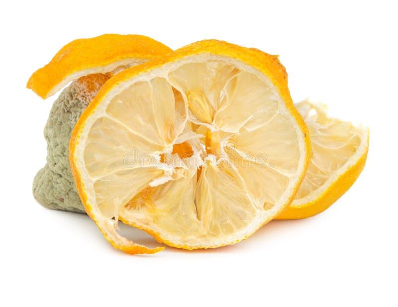 Limón putrefacto y seco aislado en blanco foto de archivo libre de regalías