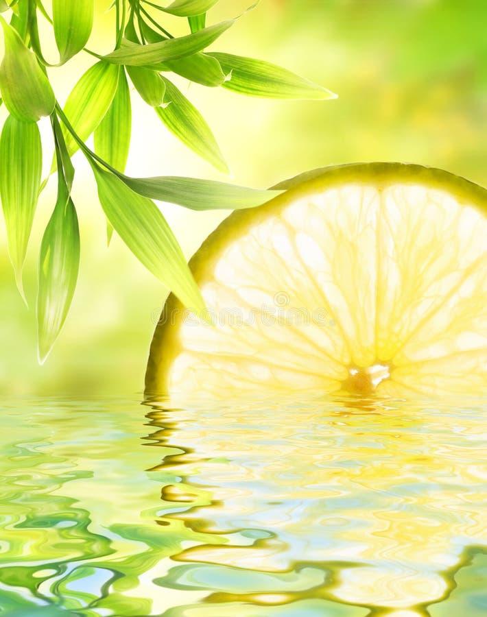 Limón reflejado en agua fotografía de archivo