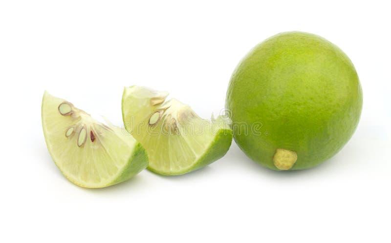Limón verde en el fondo blanco foto de archivo