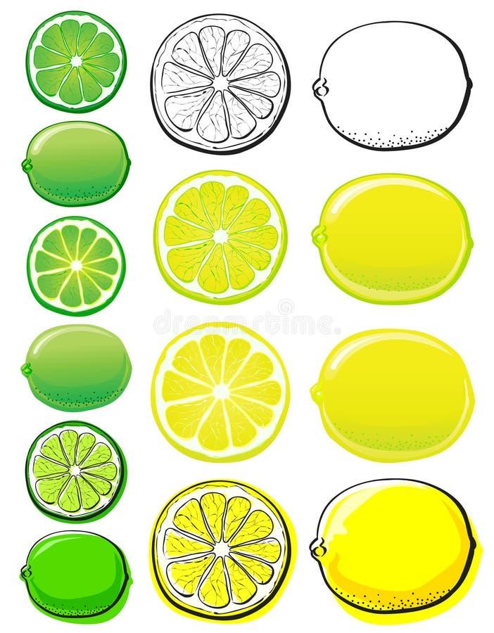 Limón y cal stock de ilustración