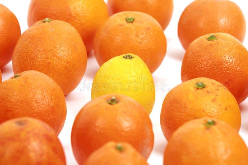 Limón y naranjas imagen de archivo libre de regalías