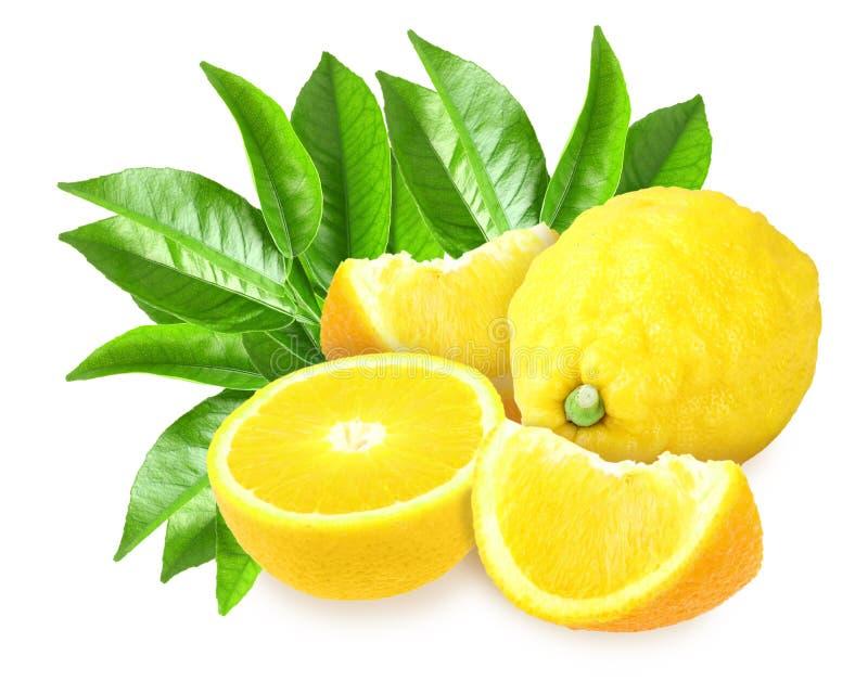 Limões amarelos frescos com folha verde imagens de stock royalty free