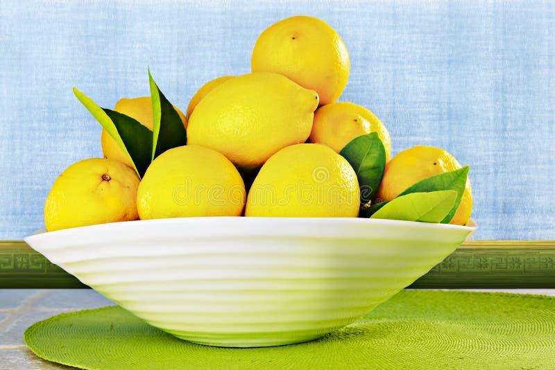 Limões de Eureka em uma parede branca de Grunge do ~ da bacia de China fotografia de stock royalty free