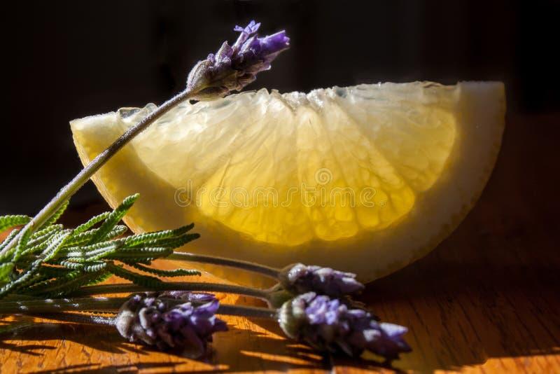 Limões e alfazema fotografia de stock royalty free