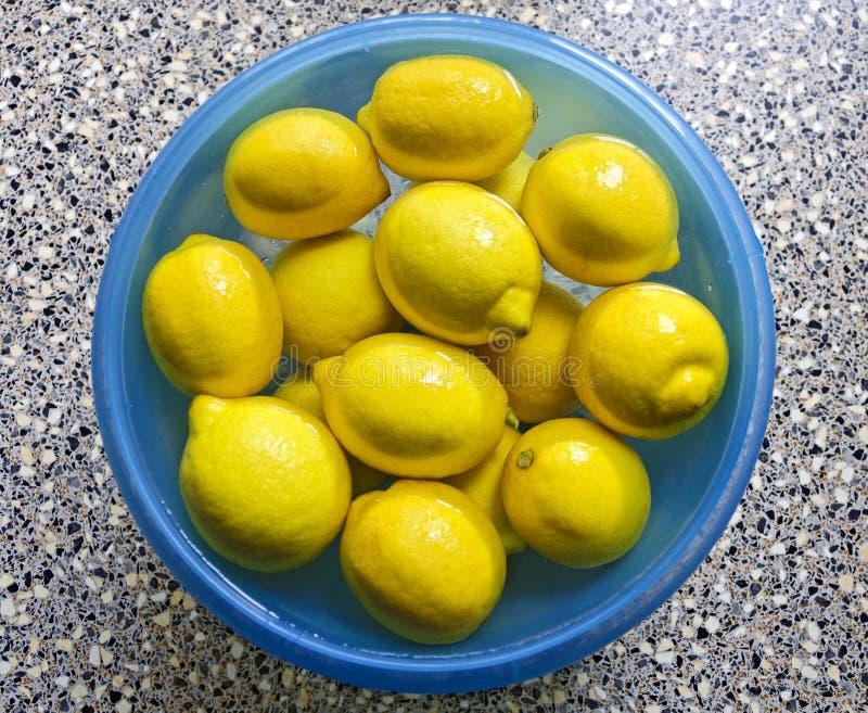 Limões em uma bacia com água foto de stock