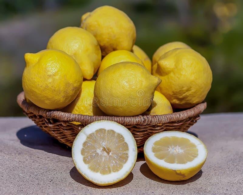 Limões frescos imagem de stock royalty free